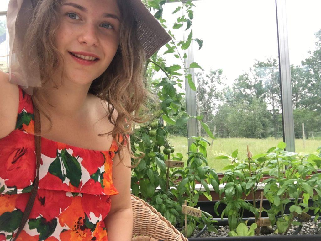 landsbygden småland växthus hållbar utveckling