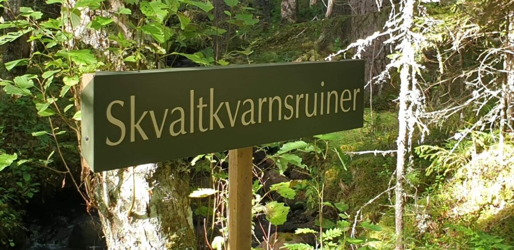 Natur vandring norr sverige