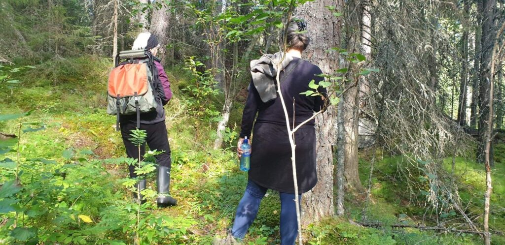 Naturupplevelse sverige naturbloggar