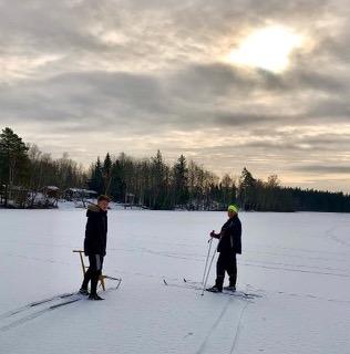 Vinterlov vid sjön en dikt