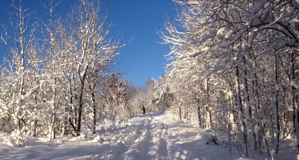 Förstå vem jag är som person: Den svenska landsbygden, rötter, friskluft och outdoor